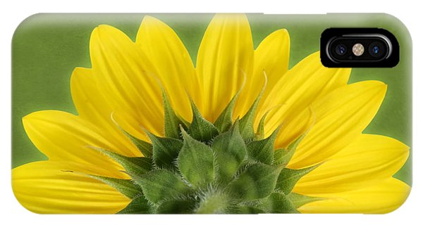 IPhone Case featuring the photograph Sunflower Sunrise - Botanical Art by Debi Dalio