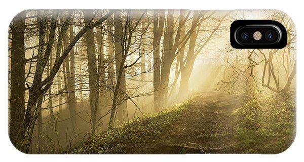 Sunlight Streaming Through Fog Phone Case by Adam Jones