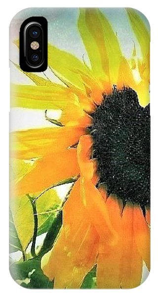 iPhone Case - Sunny Day by Stephanie Callsen