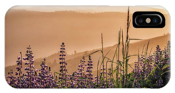 Sunset Among The Lupine IPhone Case