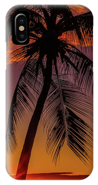 Sunset At The Palm IPhone Case