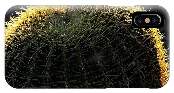 Sunset Cactus IPhone Case