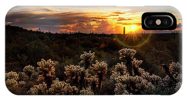 Teddy Bear Cholla iPhone Case - Sunset Hike  by Saija Lehtonen