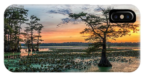 Bald Cypress iPhone Case - Sunset Over Bald Cypress From Grassy by Anthony Heflin