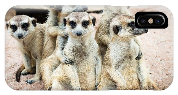 Small iPhone Case - Suricate Or Meerkat Family by Tratong