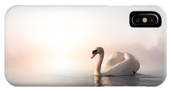 Swan iPhone Case - Swan Floating On The Water At Sunrise by Konstanttin