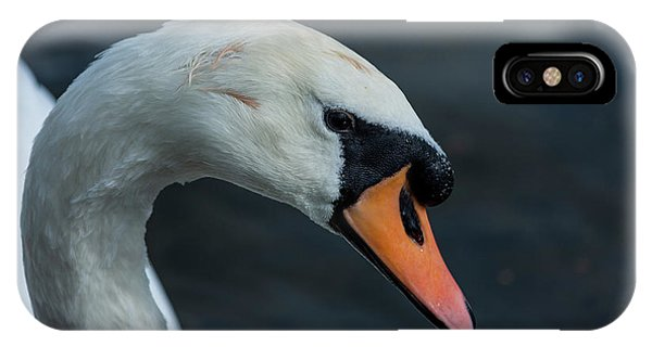IPhone Case featuring the photograph Swan Head Close Up On Blue Background by Scott Lyons