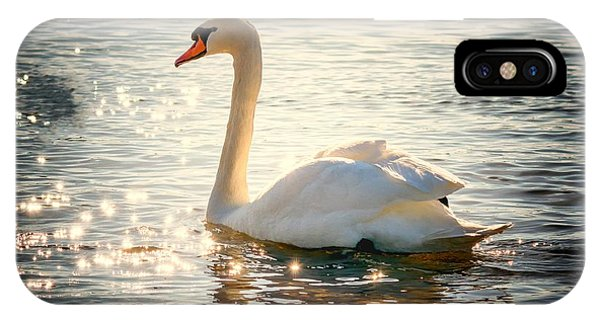 Swan On Golden Waters IPhone Case