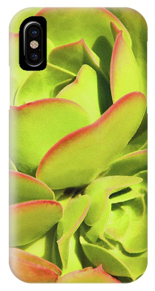 Sweet Succulents I IPhone Case