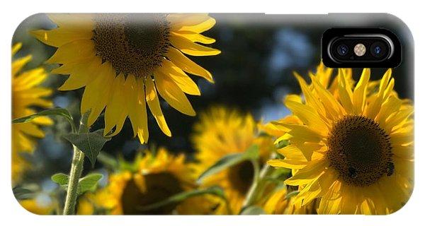 Sweet Sunflowers IPhone Case