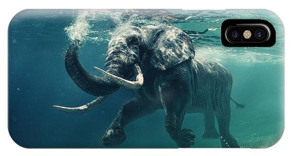 Body iPhone Case - Swimming Elephant Underwater. African by Willyam Bradberry