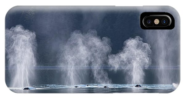 Synchronized Swimming Humpback Whales Alaska IPhone Case
