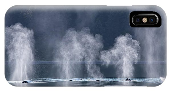 IPhone Case featuring the photograph Synchronized Swimming Humpback Whales Alaska by Nathan Bush