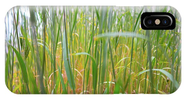 IPhone Case featuring the photograph Tall Grass In Herat by SR Green