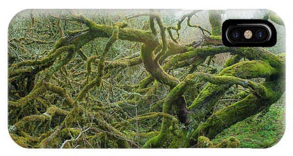 IPhone Case featuring the photograph Tangled Moss by Mark Duehmig
