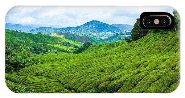 Farmland iPhone Case - Tea Plantation In Cameron Highlands At by Blackcat Imaging