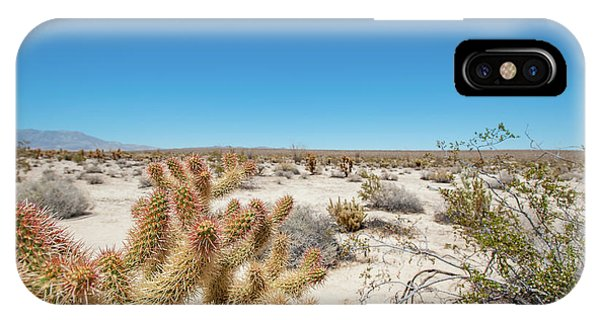 Teddy Bear Cactus IPhone Case