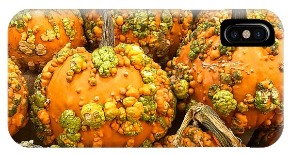 Textured Pumpkins  IPhone Case
