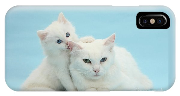 IPhone Case featuring the photograph Thankless Kitten by Warren Photographic
