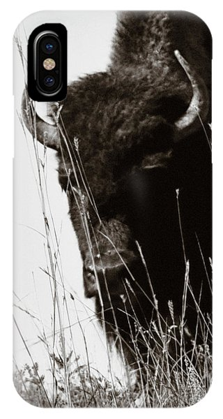 The Bison Roaming The Grasslands In Custer State Park South Dakota United States Of America IPhone Case