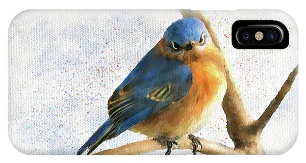 Avian iPhone Case - The Bluebird Of Unhappiness by Lois Bryan