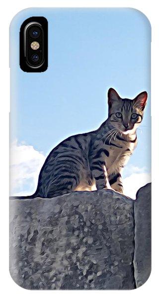 The Cat IPhone Case