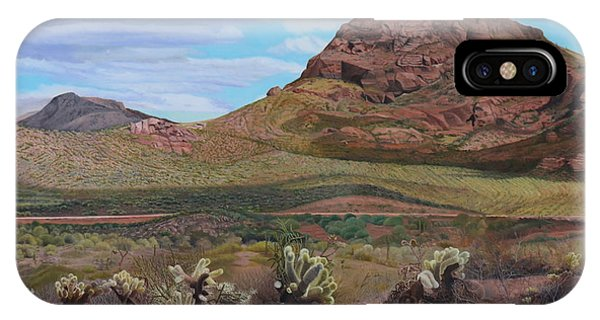The Cholla At Mount Mcdowell, Arizona IPhone Case
