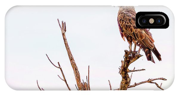 IPhone Case featuring the photograph The Crowned Eagle by Kay Brewer