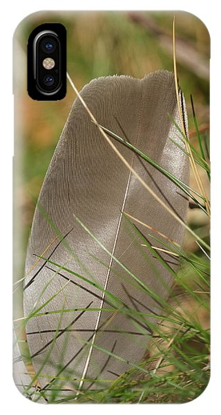 IPhone Case featuring the pyrography The Feather by Magnus Haellquist