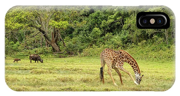 IPhone Case featuring the photograph The Giraffe And The Cape Buffalo by Kay Brewer