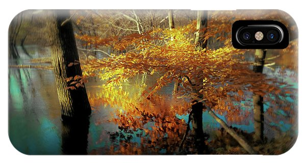 Flooded iPhone Case - The Golden Bough by Jerry LoFaro