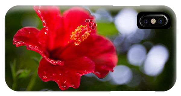 The Hibiscus Flower Close Up Phone Case by Chayatorn Laorattanavech