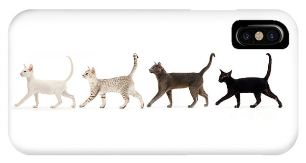 IPhone Case featuring the photograph The Kits Parade - Four by Warren Photographic