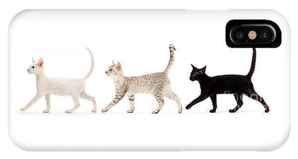 The Kits Parade - Three IPhone Case