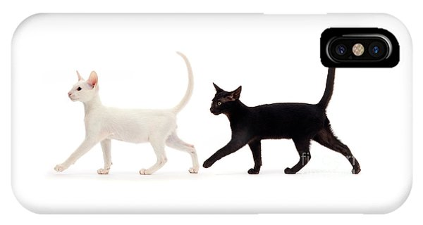 IPhone Case featuring the photograph The Kits Parade - Two by Warren Photographic
