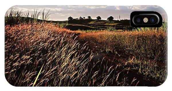 The Last Grassy Field, Trinidad IPhone Case