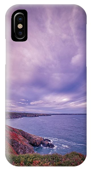 The Lizard Point IPhone Case