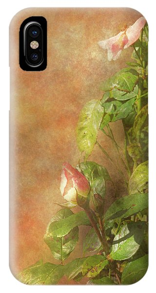 IPhone Case featuring the photograph The Lovely Rose by Mike Savad - Abbie Shores