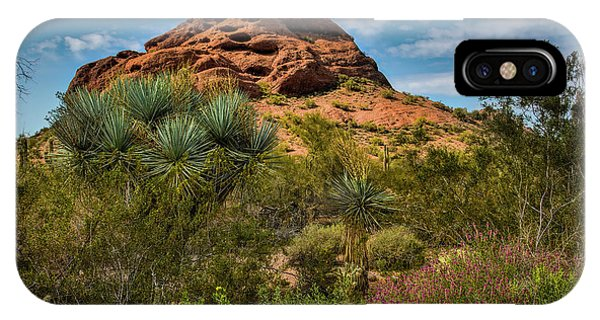 The Mighty Papago IPhone Case