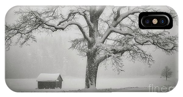 IPhone Case featuring the photograph The Old Oak by Edmund Nagele