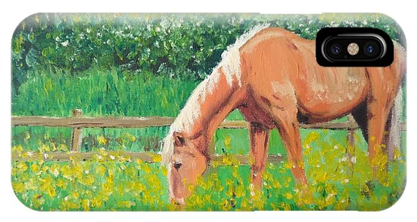 The Palomino And Buttercup Meadow IPhone Case