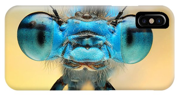 Male iPhone Case - The Picture Shows A Beautiful  Damesfly by Ireneusz Waledzik