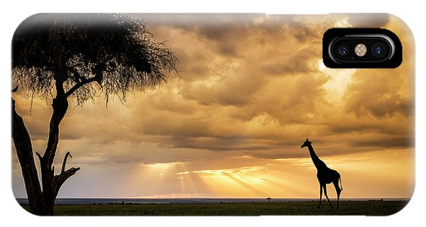 The Plains Of Africa IPhone Case