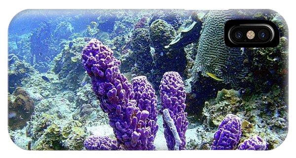 The Purple Sponge IPhone Case