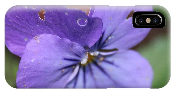 The Raggedy Viola IPhone Case
