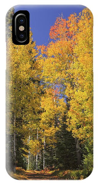 The Road A Little Less Traveled IPhone Case