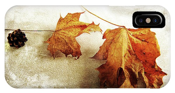 IPhone Case featuring the photograph The Sound Of Autumn by Randi Grace Nilsberg