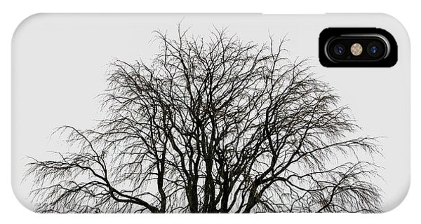 IPhone Case featuring the photograph The Tree By The Side Of The Road by Jim Dollar