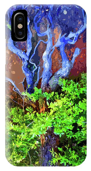 IPhone Case featuring the photograph The Tree Of Life by Ben Upham III