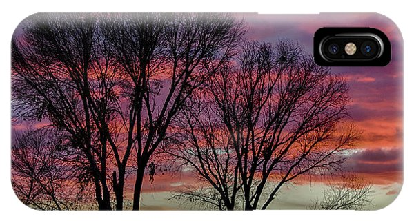 The Trees Know Sunset IPhone Case